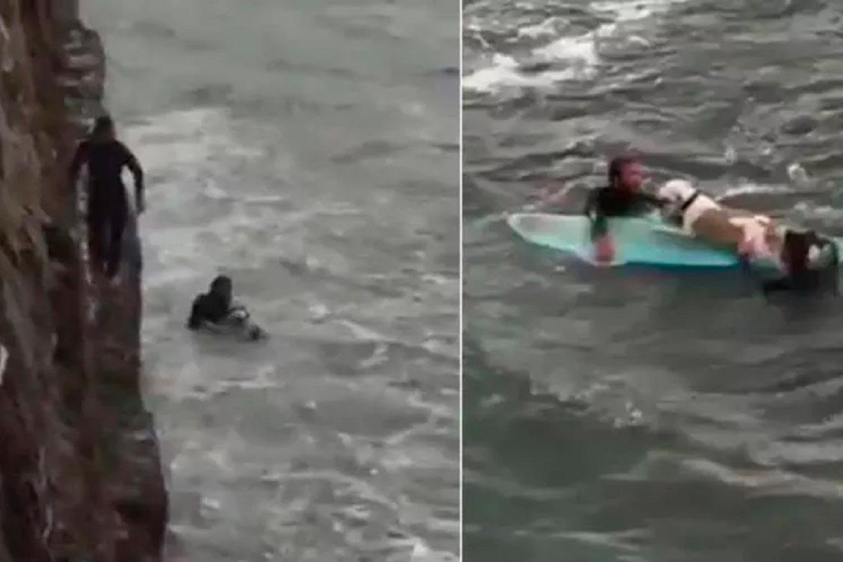 surfistas salvam cão